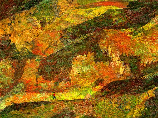 Bodega Tapestry