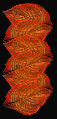 Leaf Twist I