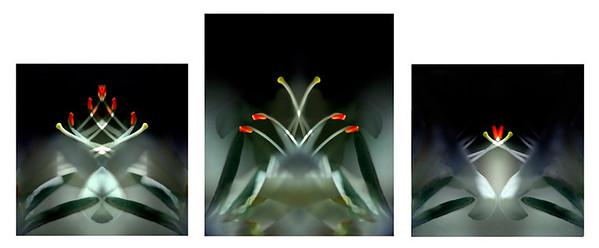 Faith, Love & Hope Triptych