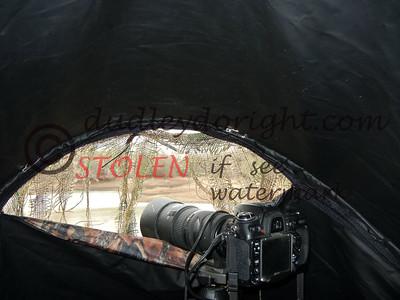 -KRanch1210-413 camera blind