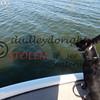 LakeSugarMEX 1- 2017-007 Callie  shadow