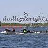 LakeSugarMEX 3-2018-115 netters and gulls