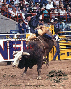 701-11ac joeWIMBERLY-Beutler-Homegrown-NFR1990_filtered