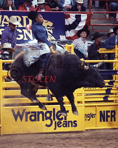 700-24ac ervinWILLIAMS Johnson-NightTrain NFR1990 81pts