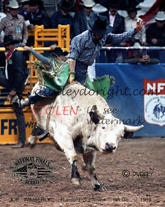 150-2c joeWIMBERLY-Rumford-Sunflower-NFR1989_filtered