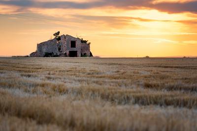Golden Ruin