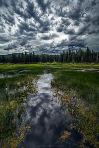 Storm Path Reflection