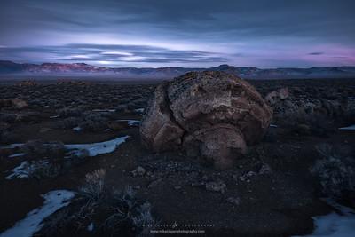 Moonglow Mushroom (2015)