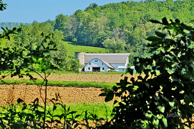 Swannanoa Valley Farm - North Carolina