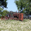 Old Tractor of Springtime
