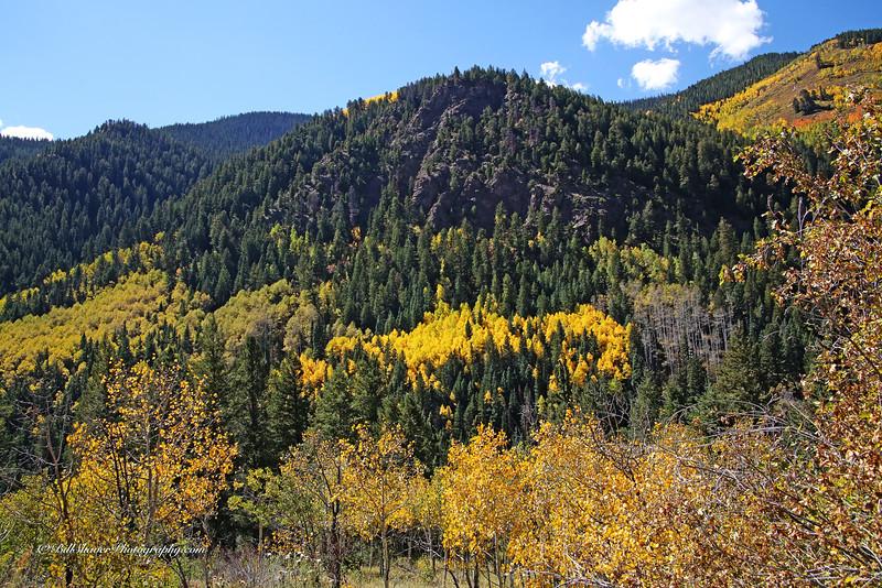 Changing Colors Colorado (4)