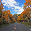 Changing Colors Colorado (20)