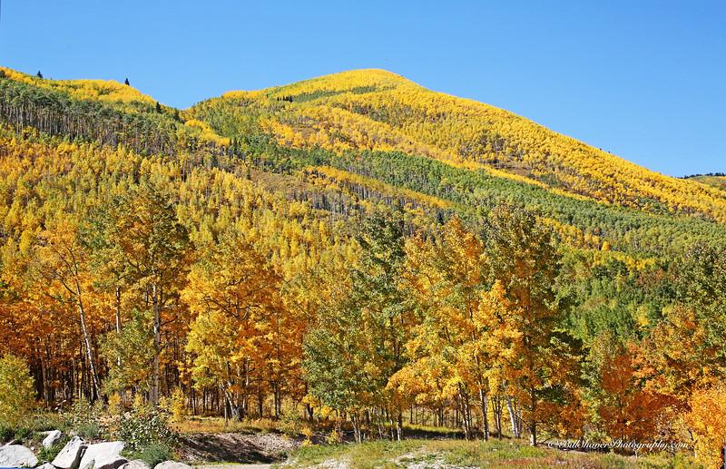 Changing Colors Colorado (15)