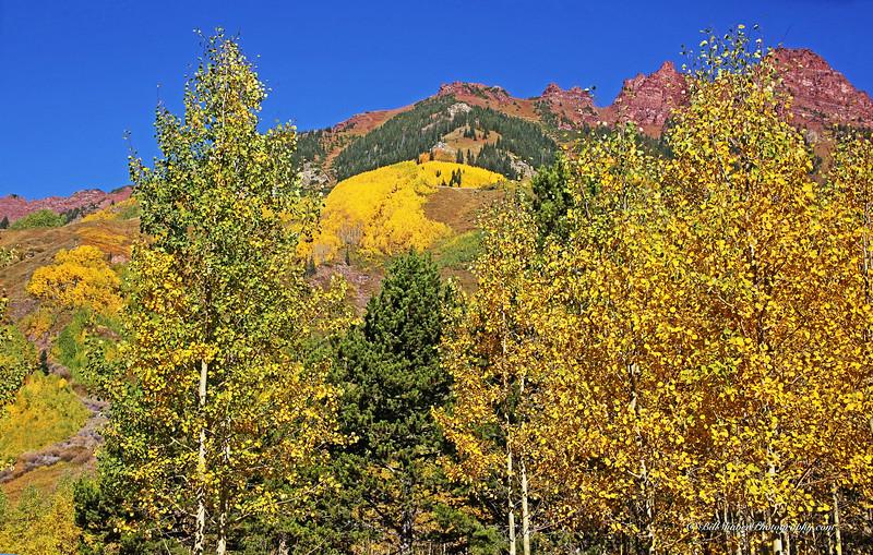 Changing Colors Colorado (1)