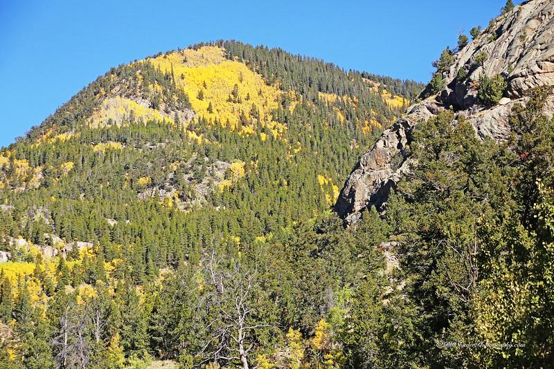 Changing Colors Colorado (33)