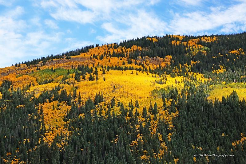 Changing Colors Colorado (24)