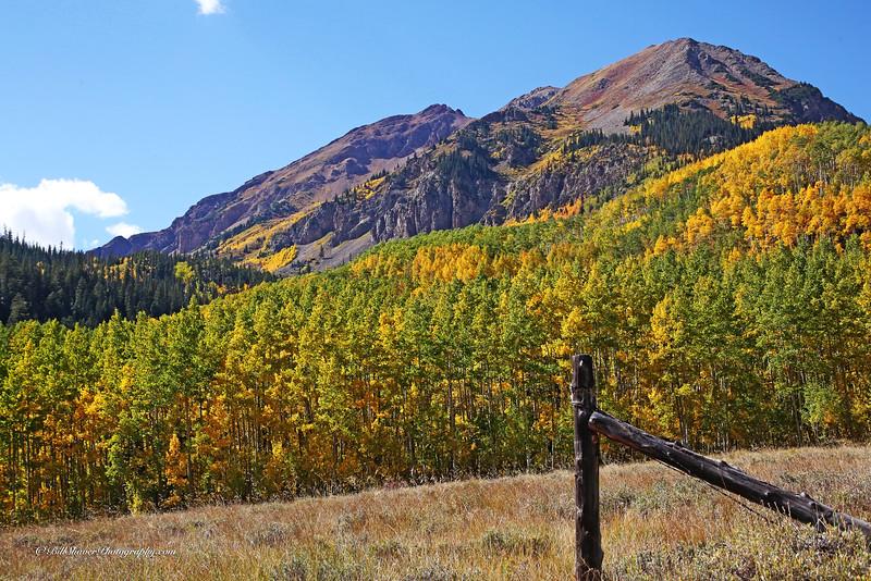 Changing Colors Colorado (34)