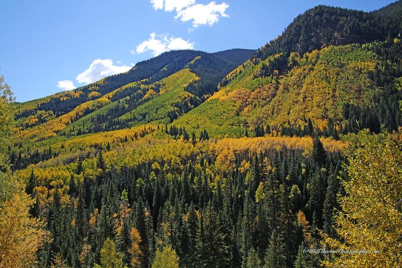 Changing Colors Colorado (6)