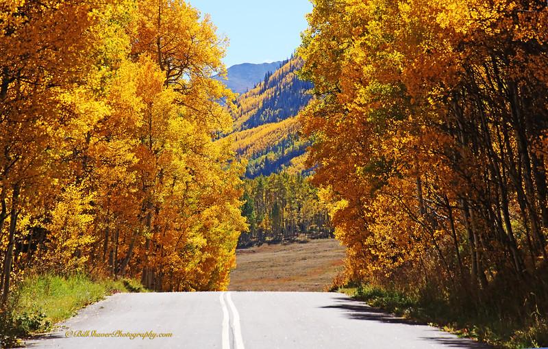 Changing Colors Colorado (17)