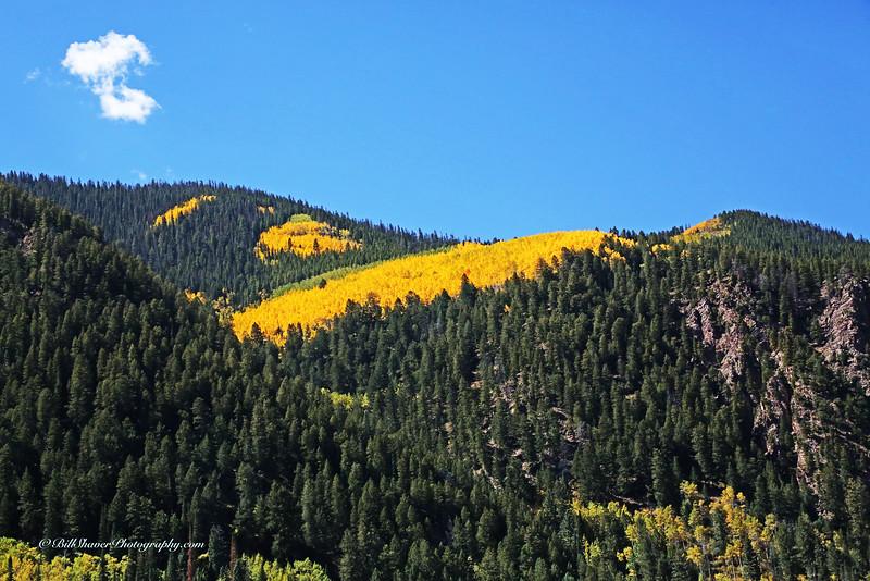 Changing Colors Colorado (7)