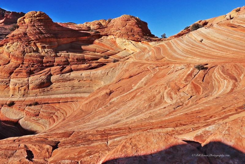 The WAVE in Coyote Buttes, Utah  7