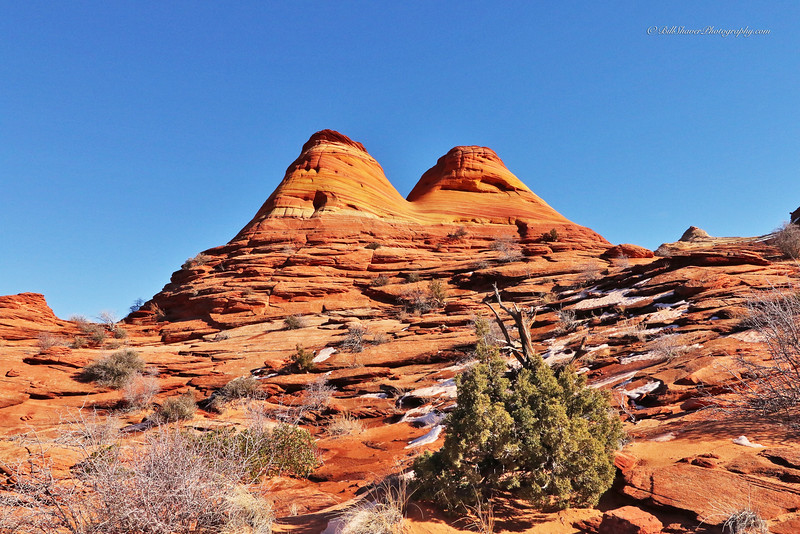The WAVE in Coyote Buttes, Utah  5