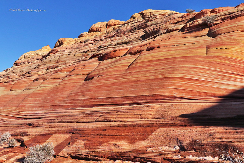 The WAVE in Coyote Buttes, Utah  4