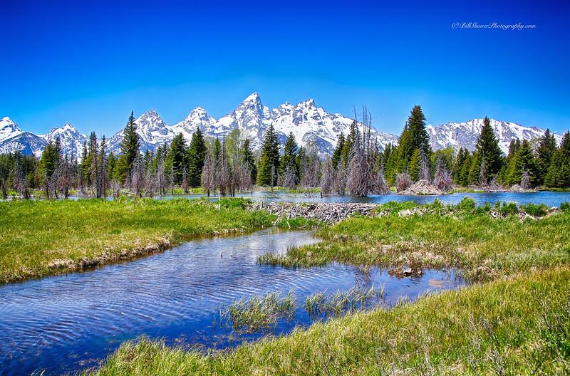 Schwabacher's Landing - Jackson Hole, Wyoming - 4