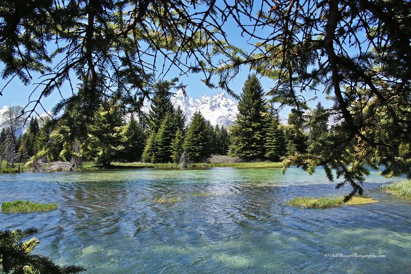 Schwabacher's Landing - Jackson Hole, Wyoming - 3