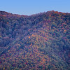 Fall Colors - Cade's Cove - Smokey Mountains (1)