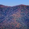 Fall Colors - Cade's Cove - Smokey Mountains (1)