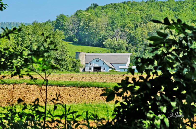 Swannanoa Valley Farm - North Carolina
