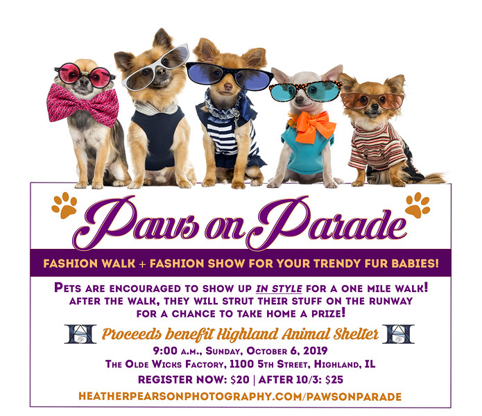 PAWS ON PARADE 2019c