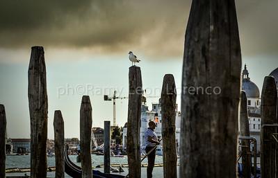Venezia 2009-Briccole