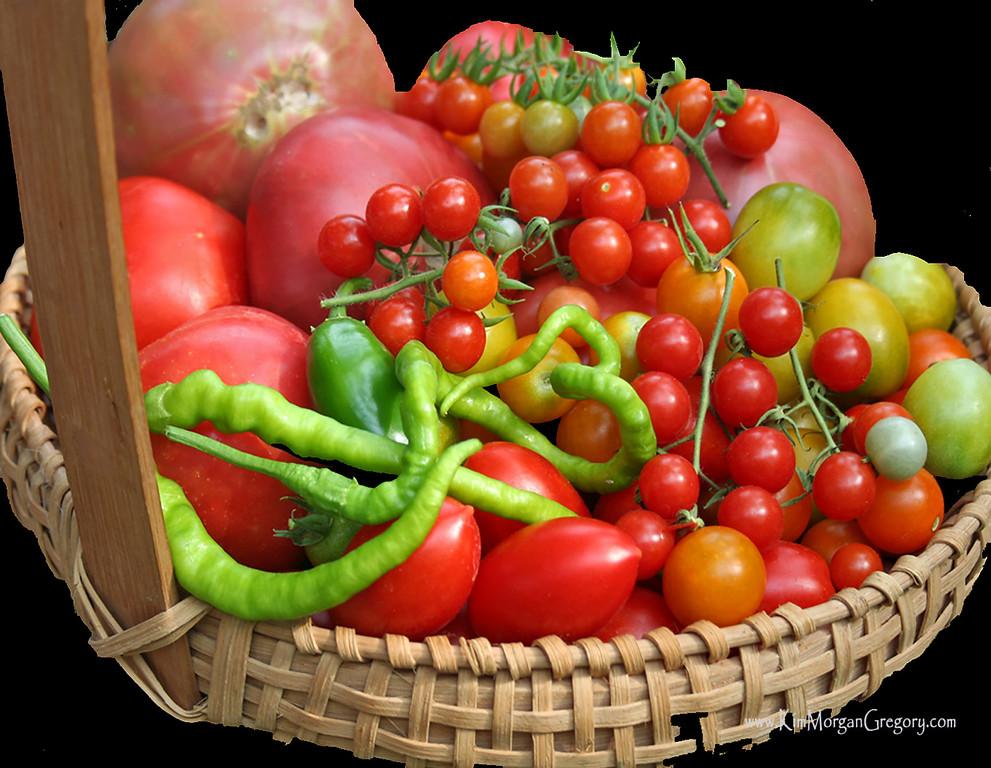 Basket of Produce ~ Our Backyard Garden ~
