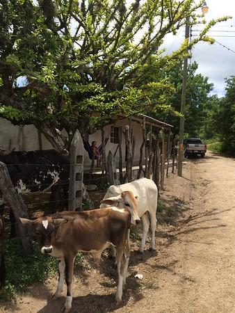 La Concepción, Honduras