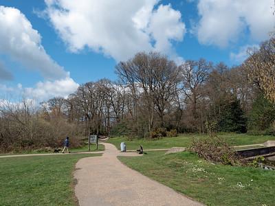 Dog walking at South Hill Park, Bracknell