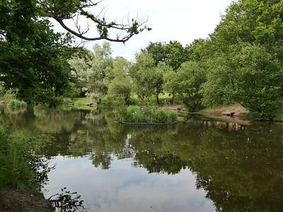 Lake at South Hill Park, Bracknell, Berkshire, UK