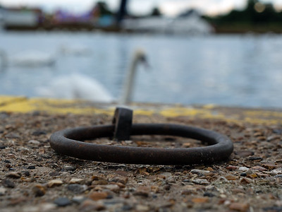 Dock Cleat Ring with a swan in background in Windsor, England, UK