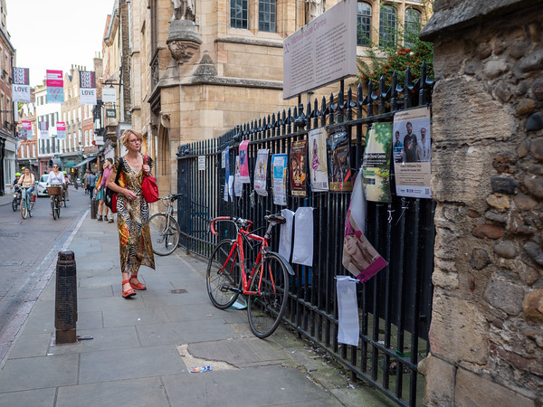 Visitor browing the pamplets for plays at Cambridge University