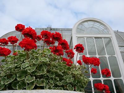 Palm House Kew Gardens London