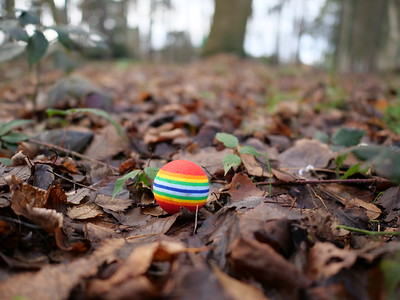 Pride Rainbow Colours LGBT ball