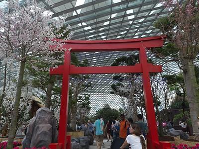 GBTB Sakura Matsuri 2018