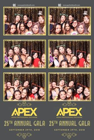 09-29-18 APEX 25th Annual Gala