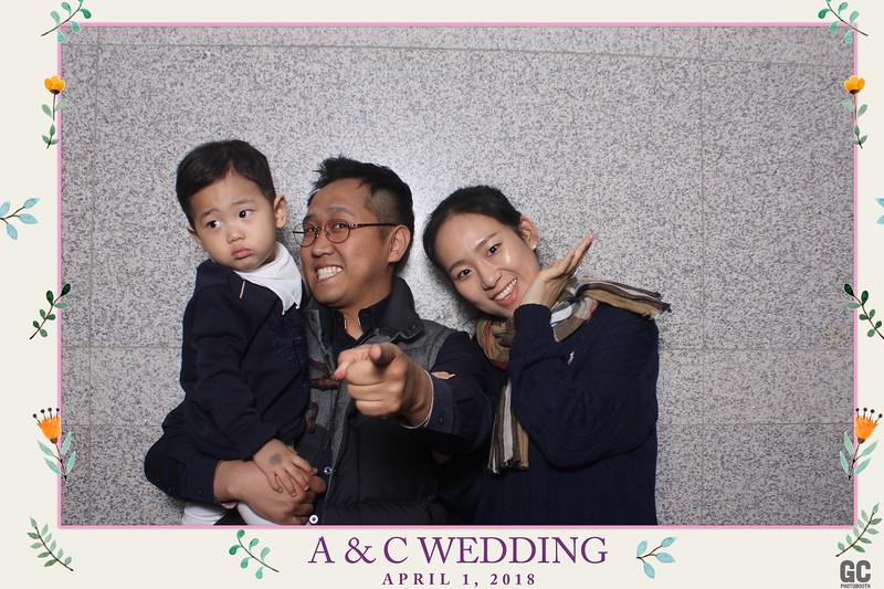 04-01-2018 A&C Wedding