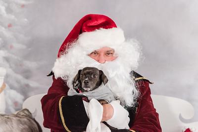 GDU KJF Santa Paws 2018-3623