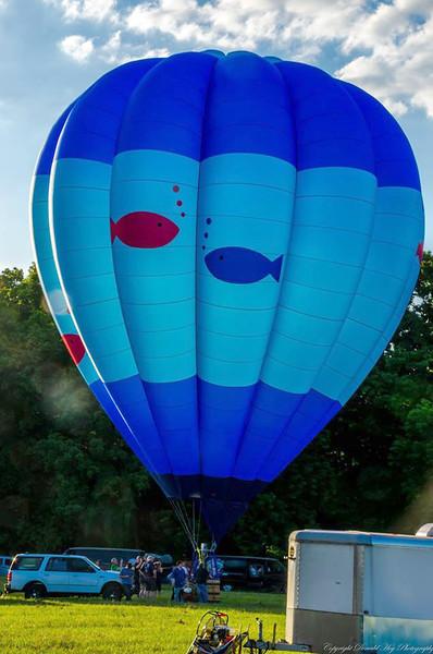 Fish Bowl Balloon