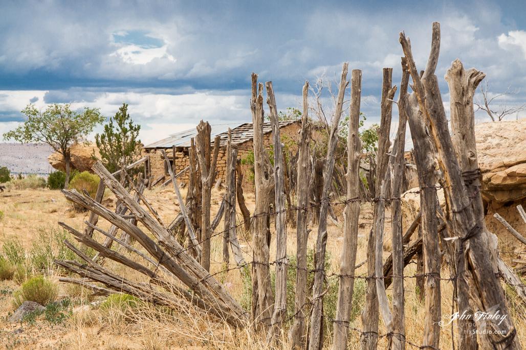 New Mexico Fields