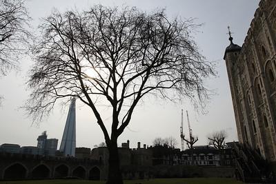 AHA London City and British Excursions