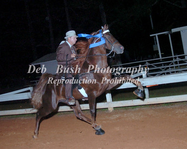 CLASS 36  OPEN 4 YR OLD - CANTER